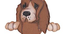 #668 Spaniel Puppy Peeker
