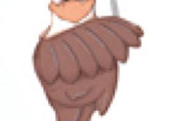 #107 Eagle