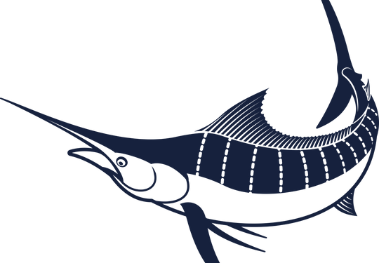 Marlin%2003%20PNG_edited.png