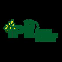 logo-ipe-1.png