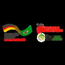 logo GIZ_Prancheta 1.png