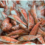 salmonetes-pequenos-malaga.jpg