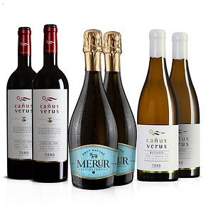 Vinos de Toro.png