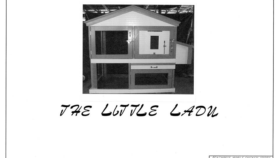 The Little Lady Architectural Drawing Set