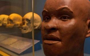Uma noite no museu: a morte e a morte de Luzia