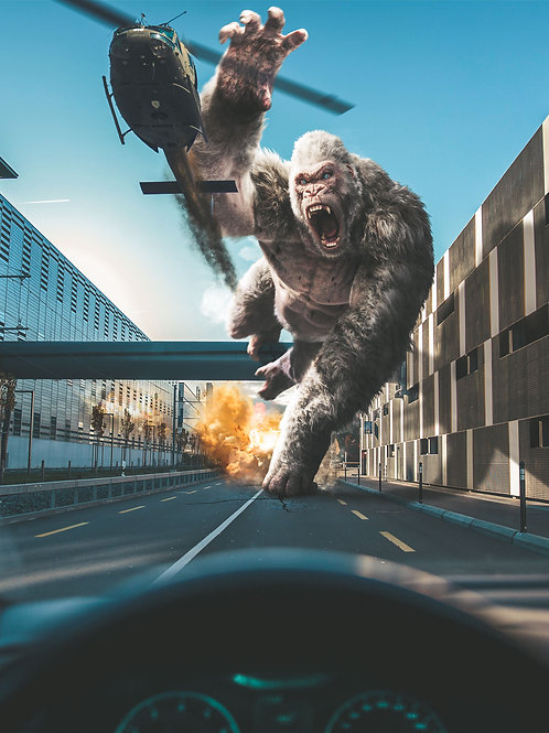 Gorilla on the Road