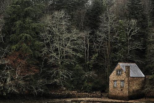 Crique, maison ostréicole et hêtraie