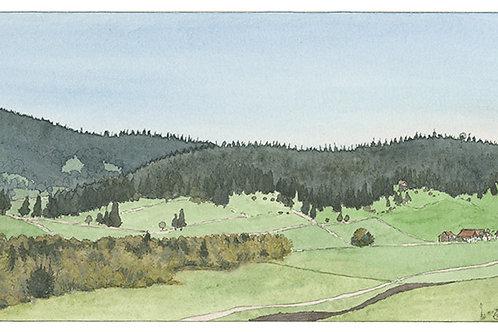 Jura neuchâtelois, tourbières de la Chaux-du-milieu