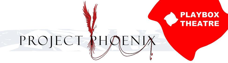 Phoenix + Pillow Banner.jpg