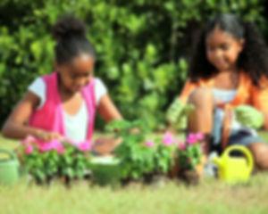 girlplanting.jpg