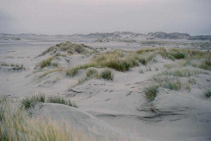 06_norderney_06.jpg