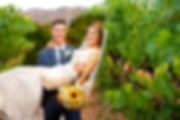 a groom carrying a bride through a vineyard
