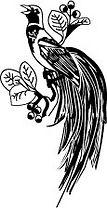 paradijsvogel-logo-rechts.jpg