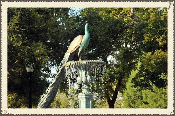 Peacock Fountain in Central Park, Winter Park, FL
