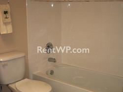 Brand New Guest Bath