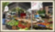 Farmer's Market in downtown Winter Park