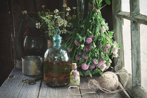 clover tincture.jpg