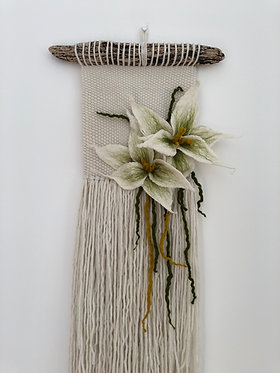 Arlodhes noth (jersey lily) MADE TO ORDER