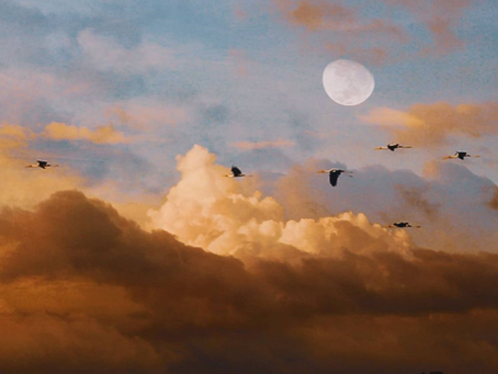 The Full Moon Cycle