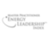 ipec-eli-assessment-energy-leadership-in