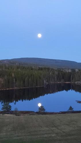 Måne-tjønna.jpg