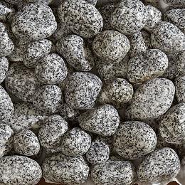Silver Granite Pebbles
