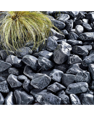 Black Sea Cobbles