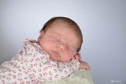 nouveau-né-portrait