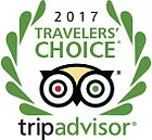 2017_travelers_choice_award.webp