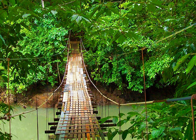 Drake Bay hanging bridgeEdit.jpg