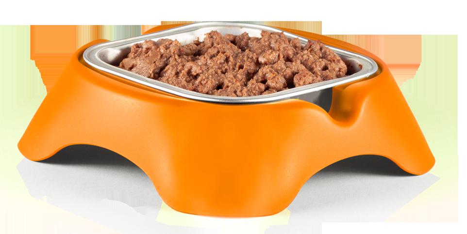 Futernapf von Snap&Feed in orange