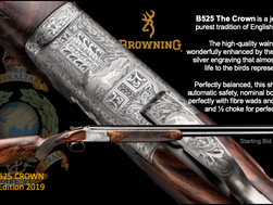 BROWNING UPGRADE AUCTION LOT!