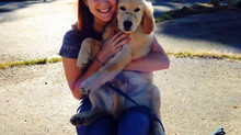 Lynn Agee - 4 Paws University Program Coordinator