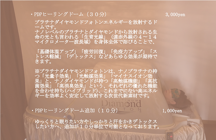 PDPドーム福岡.png