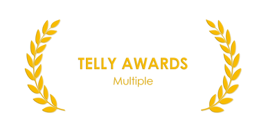 award_telly3.png