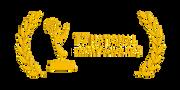 award_emmy.png