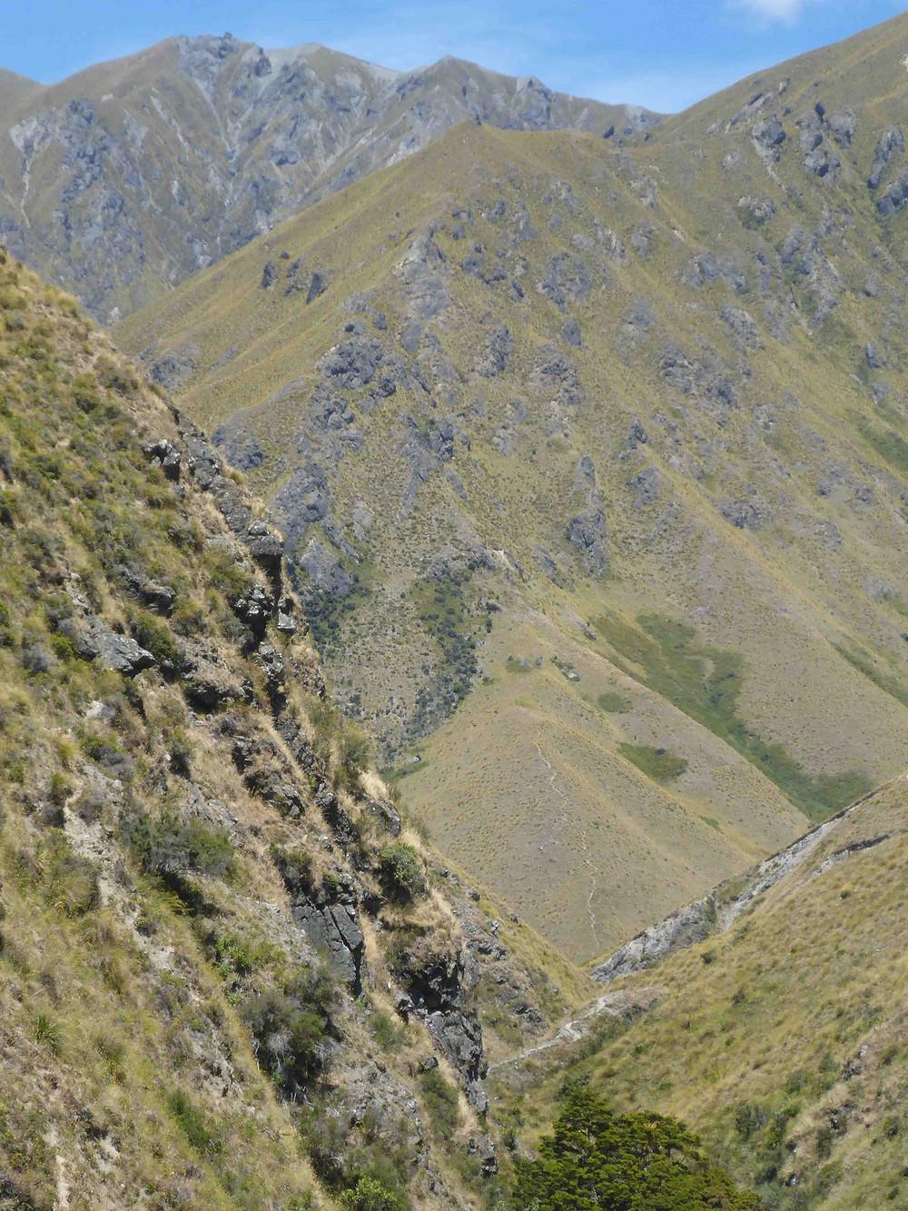 Fernburn, Motatapu Trail, New Zealand