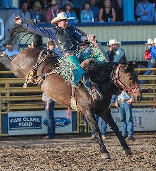 Saddle bronc 4.jpg