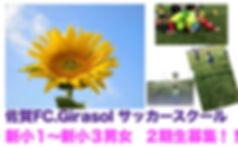 ヒラソール新チラシのコピー.jpg