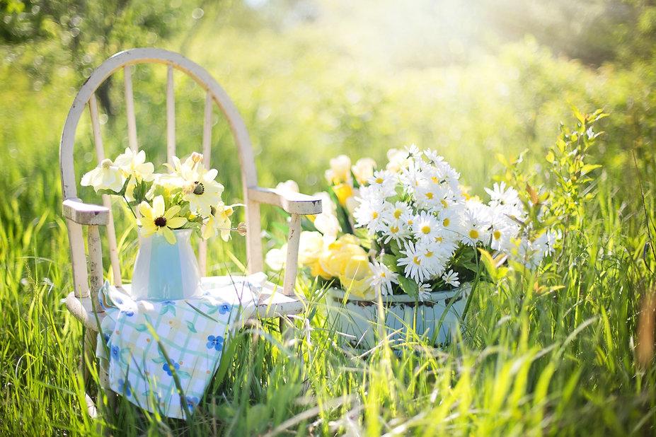 summer-still-life-779386.jpg