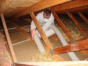 contaminated attic insulation