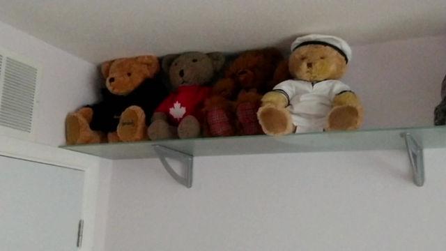 Zippy Bears!