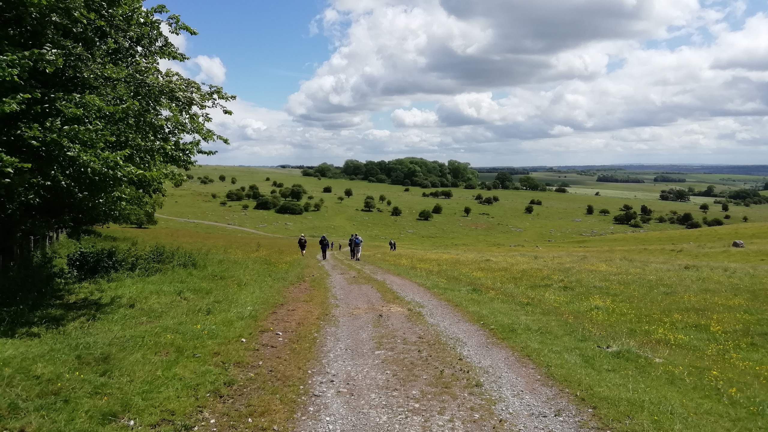 Walking in The Valley of Stones