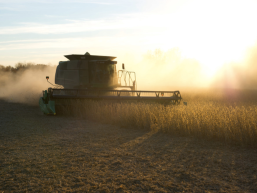 Supplemental Coverage Option Now a Part of the Federal Crop Insurance Program