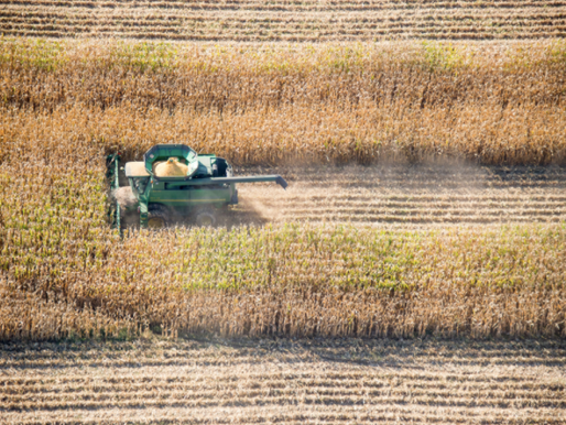2015 Corn And Soybeans Trend-Adjustments Released For Trend-Adjusted APH Crop Insurance Revenue and