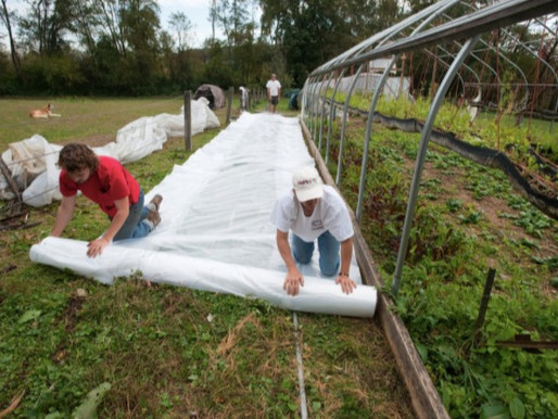 Is My Farm Exempt? OSHA Confusion Continues
