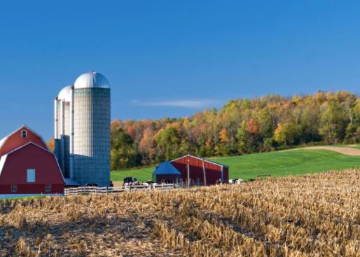 Court Decision Splitting Up Family Farm Reversed: When Farm Succession Planning Fails