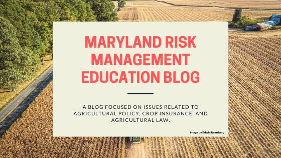 MD Risk Management Blog Header.png