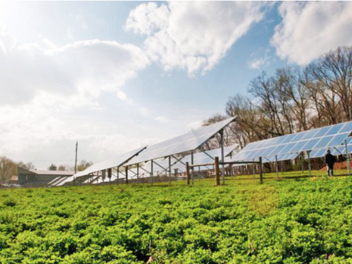 Financing Assistance for Agricultural Solar Installations in Maryland