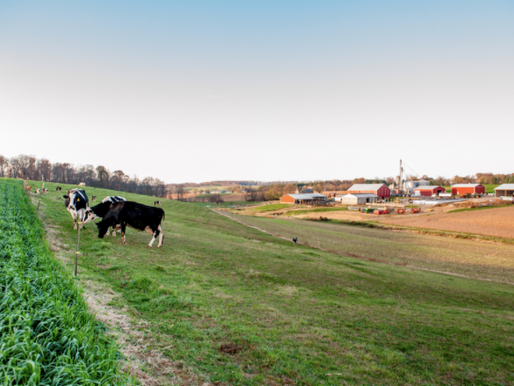 Considering Alternative Energy on the Farm? Consider the Property Tax Consequences!
